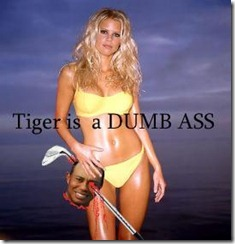 Tiger-is-a-dumb-ass